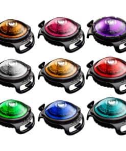 Orbiloc Dual Säkerhetslampa för hund i flera färger